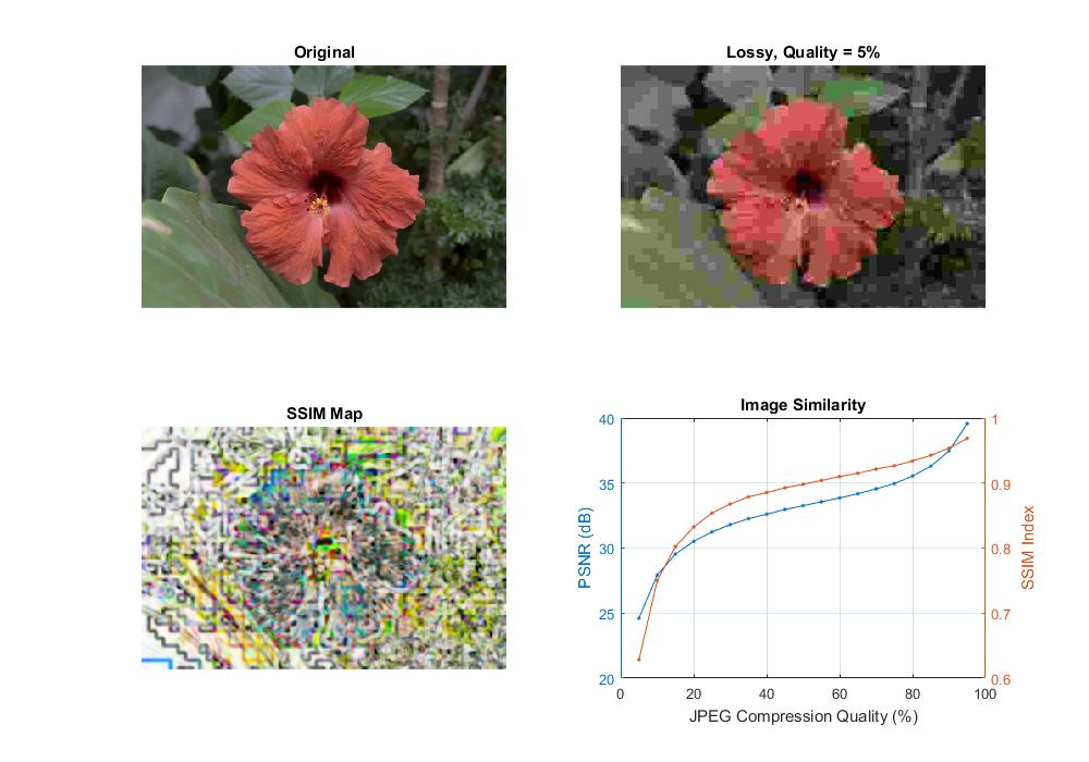 Similarity measurement (PSNR and SSIM)
